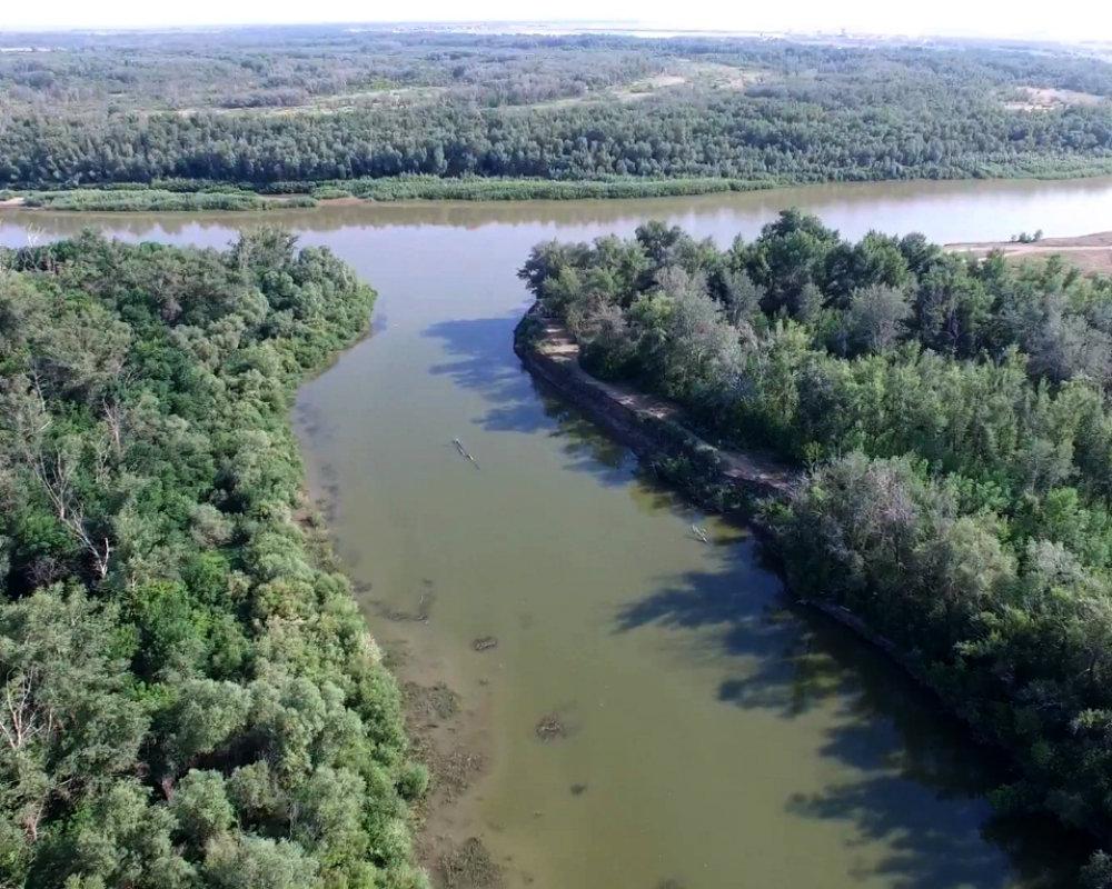 Каково экологическое состояние реки сходня